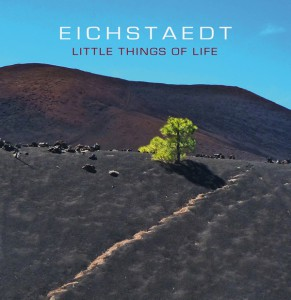 CD EIchstaedt Little Things Of Life